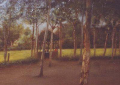 Pinos_Prat_i_arbres_bis