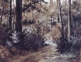 Riquer Pintura Interior de bosc aquarella rr des